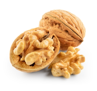Walnut, Brain Food